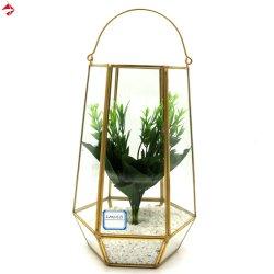 Le verre pendaison usine géométrique du support de gros de terrarium