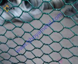 亜鉛めっき六角鉄ワイヤネット六角用ホットセール PVC コーティング ワイヤメッシュ( Wire Mesh )