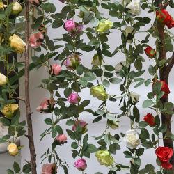 Pianta artificiale all'ingrosso 1.8m ghirlanda del fiore della Alice Rosa della 11 testa