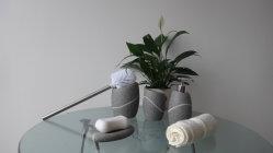 Chiavetta della stanza da bagno della resina per la casa (BP0103-LGS)