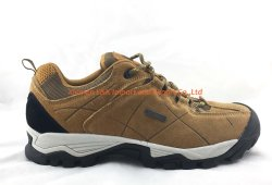 Voller lederner oberer guter Entwurf, der Schuhe für Männer wandert