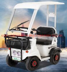 500W/650 Вт мини-Smart электромобиля с сертификат CE