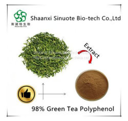 De Vervaardiging van China leveren Groene Polyphenols 80% van de Thee van het Uittreksel van de Thee Groene