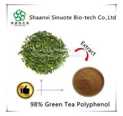 China stellt Zubehör-grüner Tee-Auszug-grüner Tee-Polyphenole 80% her