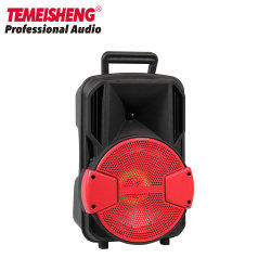 Poignée Rechargeable Temeisheng 8 pouce de haut-parleur pour une utilisation en extérieur