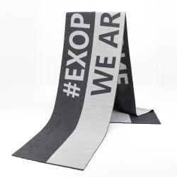Custom Logo Wintersjaal voor heren Cashmere Viscose Cotton 100% wol Luxe sjaal