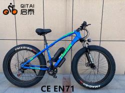 Eのバイクの脂肪質のタイヤの自転車