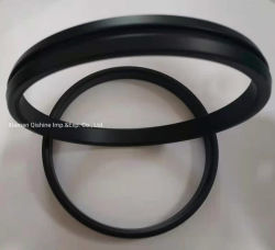 Rivestimento standard in PTFE N06625 tipo IX IX-350 Uns L-005 standard Guarnizione ad anello forgiata