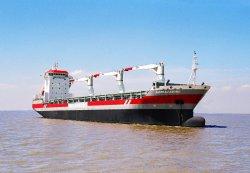 902tue+7960t MPP (container ship/bulk carrier) pour la vente
