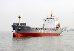 China-Qualitäts-Behälter-Verschiffen-Behälter