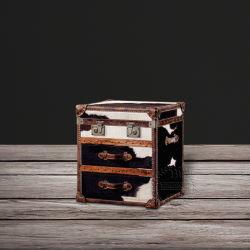 機能流行の革装飾的な記憶のトランク