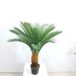 Saída de fábrica simulação decorativas Plastic Bonsai artificial das plantas Cycas Revoluta