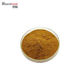 Zuiver Polysaccharide 40% van Lentinan van de Paddestoel het Poeder van het Uittreksel van de Paddestoel Shiitake
