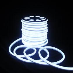 훈장을%s 매우 얇은 8*16mm LED 네온 코드 지구 빛