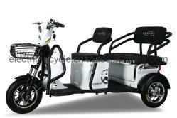 Rad-Fahrrad der Fabrik-Zubehör-Freizeit-Leben-elektrisches Dreiradselbstrikscha-drei mit bequemem Sitz