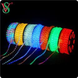220V 옥외 장식적인 밧줄 빛이 투명한 관 라운드에 의하여 2 10mm/13mm LED 타전한다