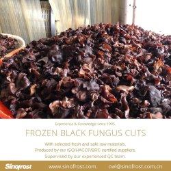ISO/HACCP/BRC 認定 IQF ブラックファングスカット、冷凍ブラックファングスカット、 IQF ブラックファングスストリップ、冷凍ブラックファングスストリップ、ブランチング