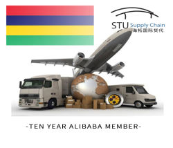 Aereo da trasporto di trasporto di FBA dalla Cina a noi magazzino del Giappone Australia Amazon