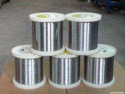 Treillis métallique en acier inoxydable et de fil métallique