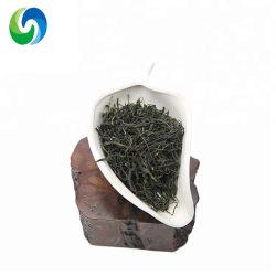 Для приготовления чая и здравоохранения стандарт ЕС Maofeng тонкий чай органический зеленый чай