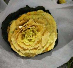 Brassica floreale del cavolo di colore giallo del mazzo dei regali della decorazione di Wholsales