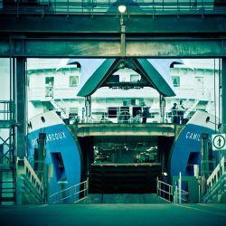 Importación de mar el servicio de envío de los Estados Unidos/USA a Shanghai China