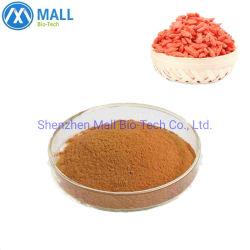 Productos Orgánicos y caliente en polvo extracto de bayas goji Goji extraer