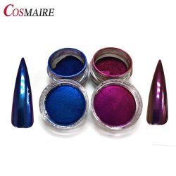 Commerce de gros Platinum Chameleon Nail Art pigment effet miroir de la poudre d'ongles en Titane Chrome