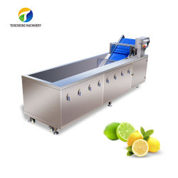 자동 오존 와셔 해산물 과일 야채 초음파 세탁기 TS-X300