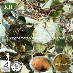 China 100% Natural Horny Goat Weed Extraer/polvo/Extracto Epimedium Icariin/CAS: 489-32-7