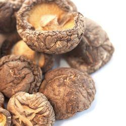 Пищевые органические сушеные грибы шитаке и грибами