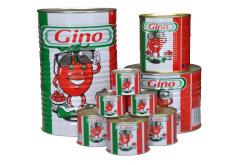 Gino 브랜드 토마토 페이스트 중국 팩토리 메이커 다양한 크기 주석 토마토 페이스트
