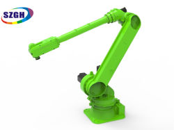 Hoge kwaliteit Szgh Telescoopic Manipulator Painting Robot Spray Gun Made In China