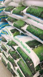 Grado granulare bianco dell'alimentazione del fosfato dicalcico