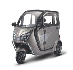 EEC 1500W 모터를 가진 승인되는 고품질 3 바퀴 자동 인력거