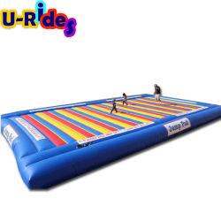 فراشة القفز في الهواء الطلق مخصصة فراشة مضحك الوقت زورق مطاطي Jumping Mat for الأطفال