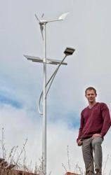 400W Solar Wind Hybrid LED Street Lights (H1.25-400W)