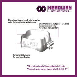Corona Dental de la banda de ortodoncia (certificado CE)