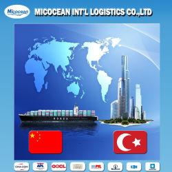GemlikかイスタンブールまたはLzmir/Merssin、トルコへの出荷Agency