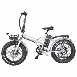 En15194 Zugelassenes 7-Gang-Derailleur Fat Tire Electric Folding Bike