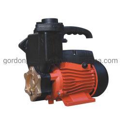 가정용 Surface Pressure Water Pumps Electric Power Bomba