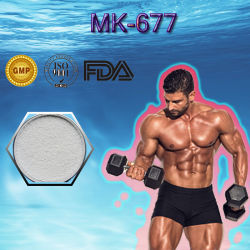 高いMk677純度のステロイドの粉との一等級Mk677/Ibutamoren