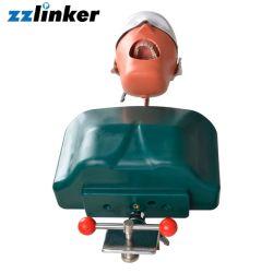 Simulatore dentale della muffa capa fantasma dentale del manichino Lk-OS21 per addestramento