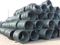 Warm gewalztes Steel Wire Rod in Coils Packing Wire