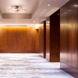 호텔 비품 가구 (EMT-F1212)를 위한 단단한 나무 베니어 벽면