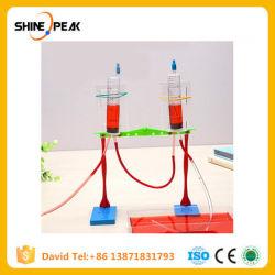 1 Defina as crianças educacionais tecnologia criativa da ciência bricolage Material Experimento física equipamento fonte Bebé Dom brinquedos para crianças