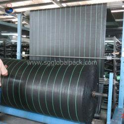 Coperchio al suolo tessuto pp sottoposto agli UV di anti del Weed del tessuto della barriera del Weed di agricoltura della Cina controllo dell'erba cervina per il mirtillo
