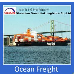 Seafreight Badezimmer-Zusatzgerät/Keramik/Spielzeug Ningbo/Tianjin nach Riyadh (PLT), Mittlerer Osten