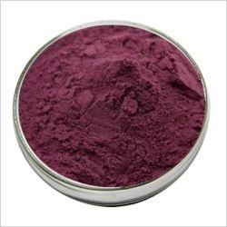 クランベリーのエキス25%のアントシアニンクランベリーのフルーツのエキスの粉