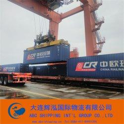 De internationale Verschepende Vracht van de Trein van de Spoorweg